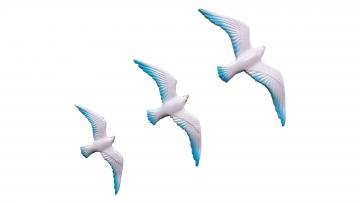 Üçlü Uçan Kuş Ev Balkon Duvar Aksesuar