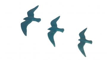 Üçlü Uçan Kuş Dekoratif Duvar Süsü Ev Dekor Objesi Turkuaz Renk