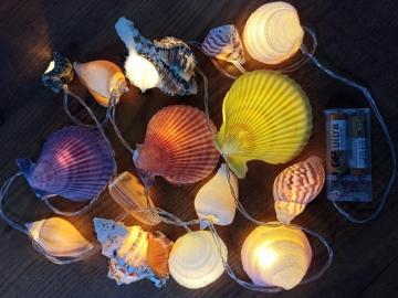 CajuArt doğal Büyük Boy Karışık Deniz Kabukları Dekoratif Led Aydınlatma Led Işık