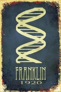 CajuArt Franklin 1920 Retro Ahşap Plaka Duvar Dekor Tablo 20x30 cm